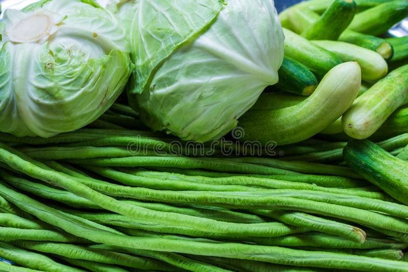 Organisches Gemüse, Kohl, Gurken, lange Bohnen vom Garten lizenzfreie stockfotografie