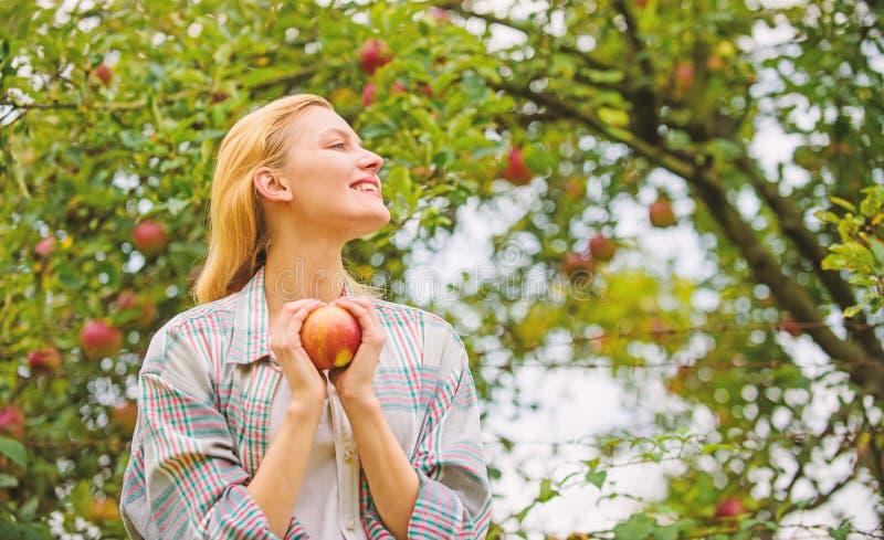 Organisches Naturprodukt des Farmerzeugnisses Artversammlungserntegarten-Herbsttag des Mädchens rustikaler Landwirt recht blond m lizenzfreies stockbild
