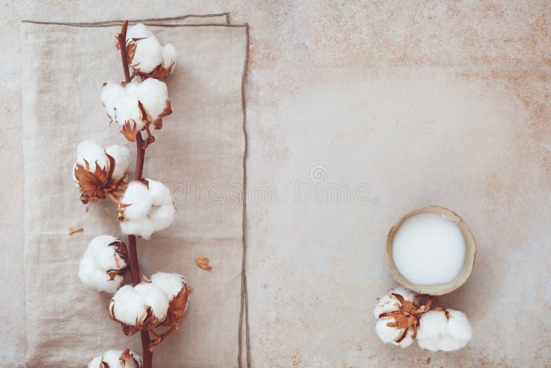 Organisches skincare Badekurortstillleben lizenzfreie stockbilder
