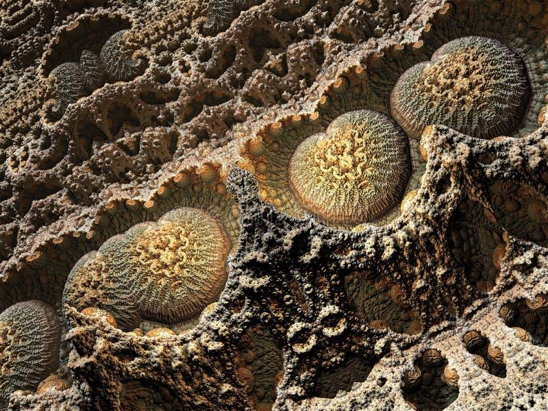 Organisches unbegrenztes Browns stockbilder