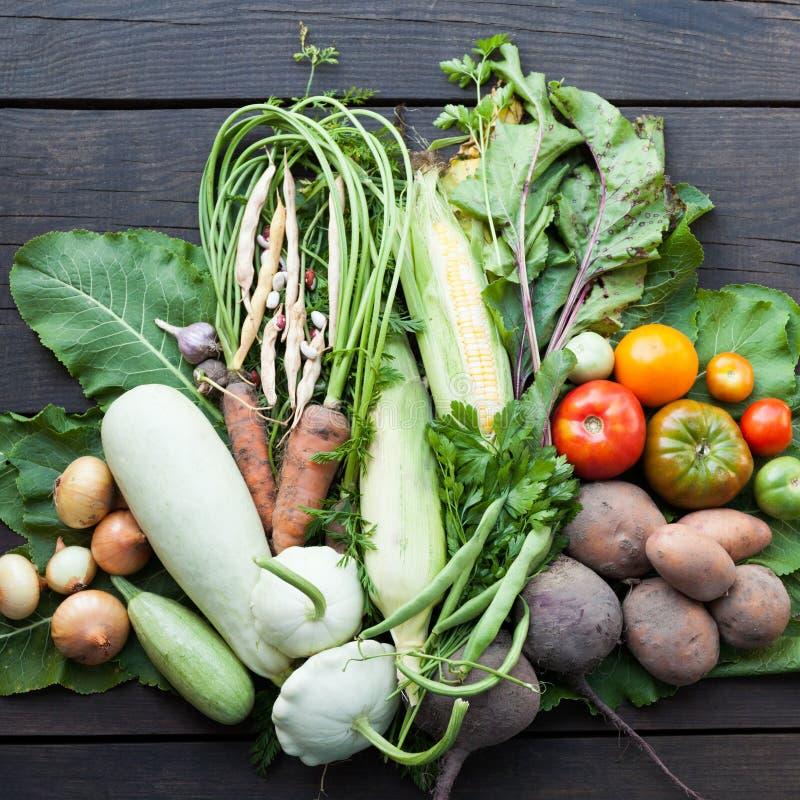 Organisk åkerbruk marknad, ny trädgårdskörd royaltyfria bilder