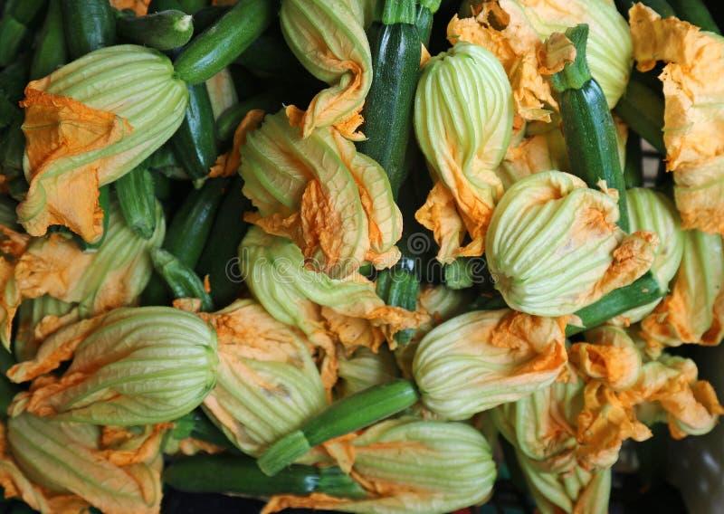 Organisk blommande zucchini eller zucchiniblommor, på den lantliga marknaden royaltyfri bild