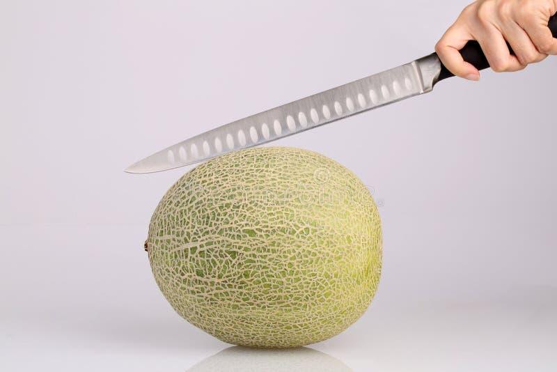 Organisk cantaloupmelonmelonfrukt med kökkniven i handisolat royaltyfri foto