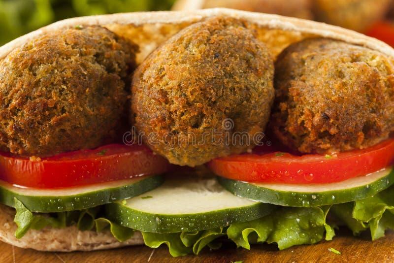 Organisk Falafel i en Pita Pocket royaltyfria foton