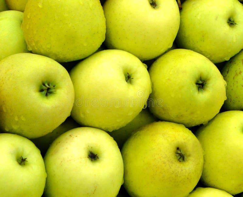 Organisk frukt arkivbilder