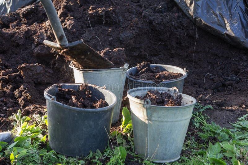 Organisk gödningsmedel i en trädgård royaltyfri foto