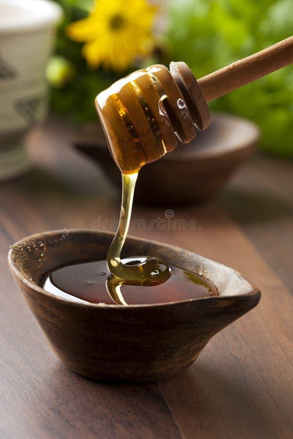 organisk honung royaltyfri bild