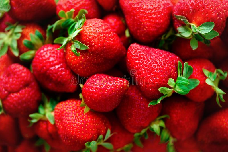 Organisk jordgubbebakgrund med kopieringsutrymme Top beskådar Strikt vegetarian- och vegetarianbegrepp Bärtextur Sund sommar royaltyfri bild
