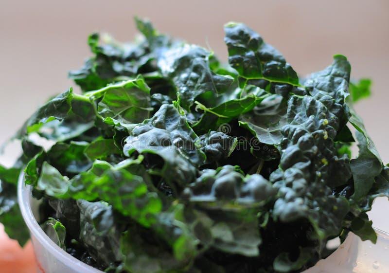 organisk kale arkivbild
