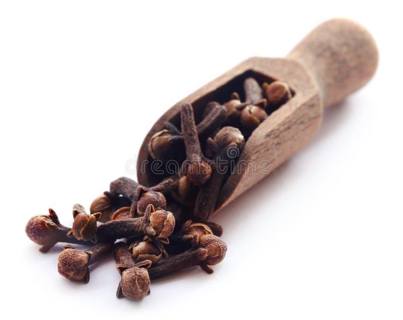 Organisk kryddnejlika i träskopa arkivbild