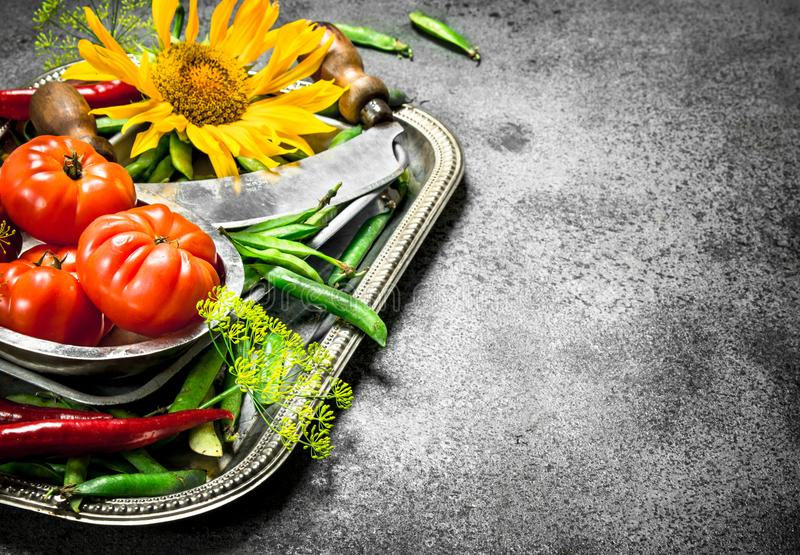 Organisk mat Gröna ärtor, tomater och peppar för varm chili på ett stålmagasin royaltyfria bilder