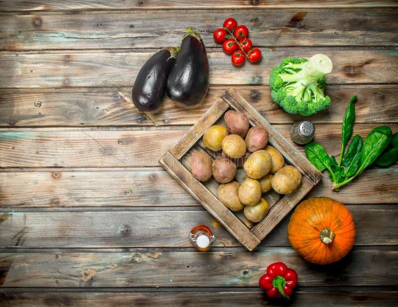 Organisk mat mogna grönsaker fotografering för bildbyråer