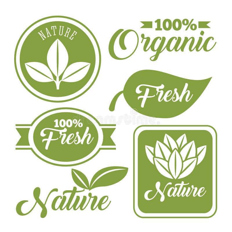 organisk och naturlig design vektor illustrationer