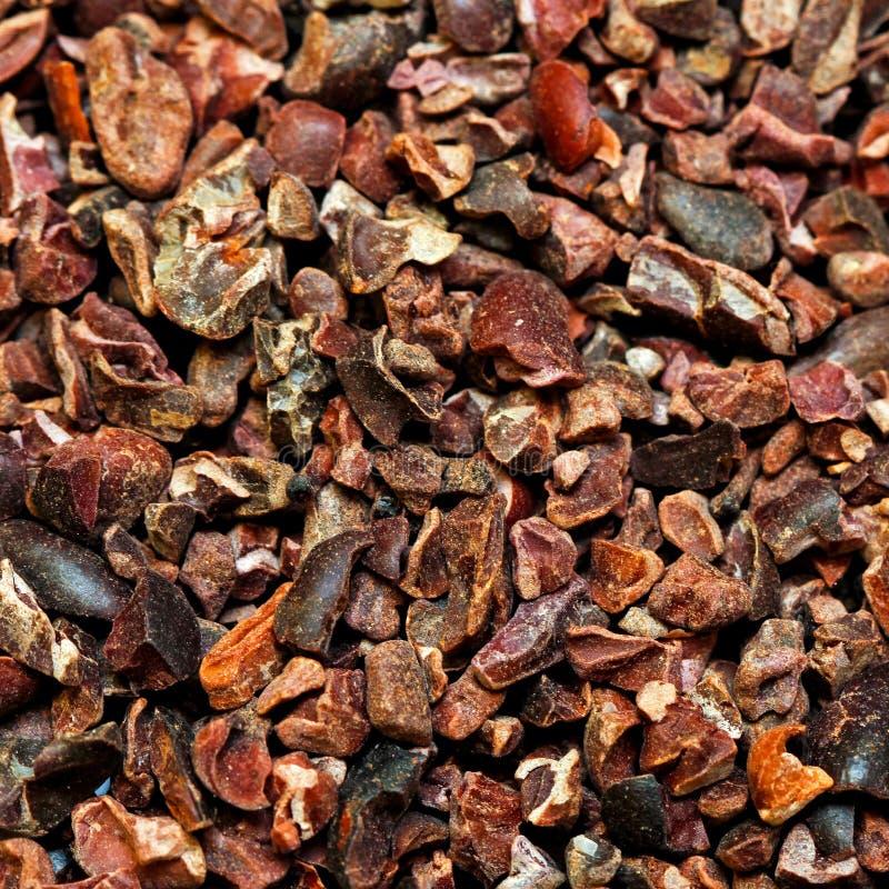 Organisk rå kakao royaltyfria bilder