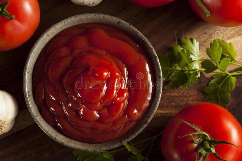 Organisk röd tomatketchup fotografering för bildbyråer
