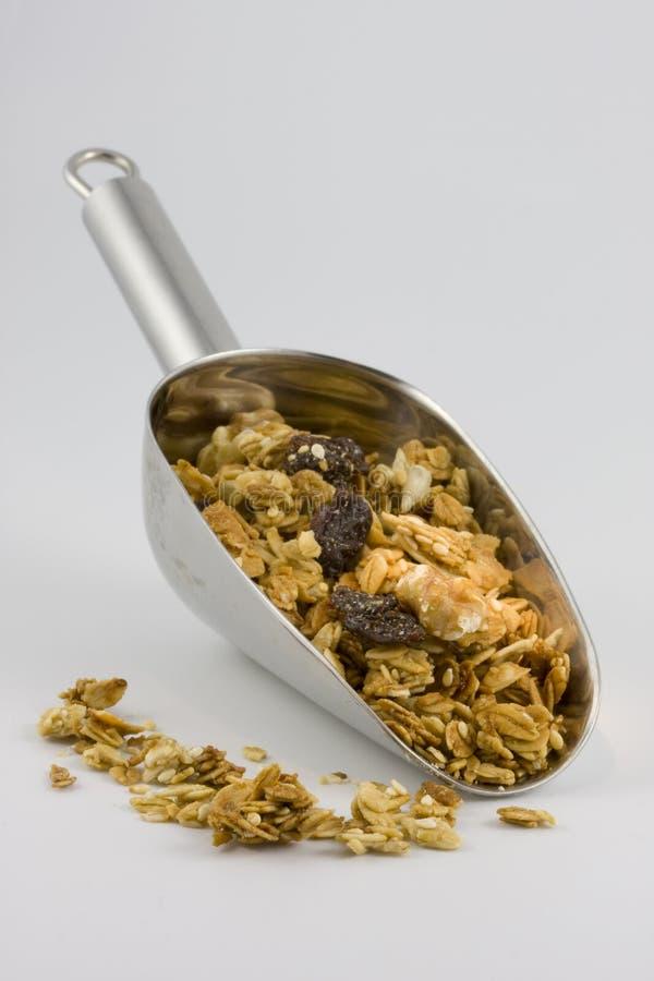 organisk skopa för granola arkivbild