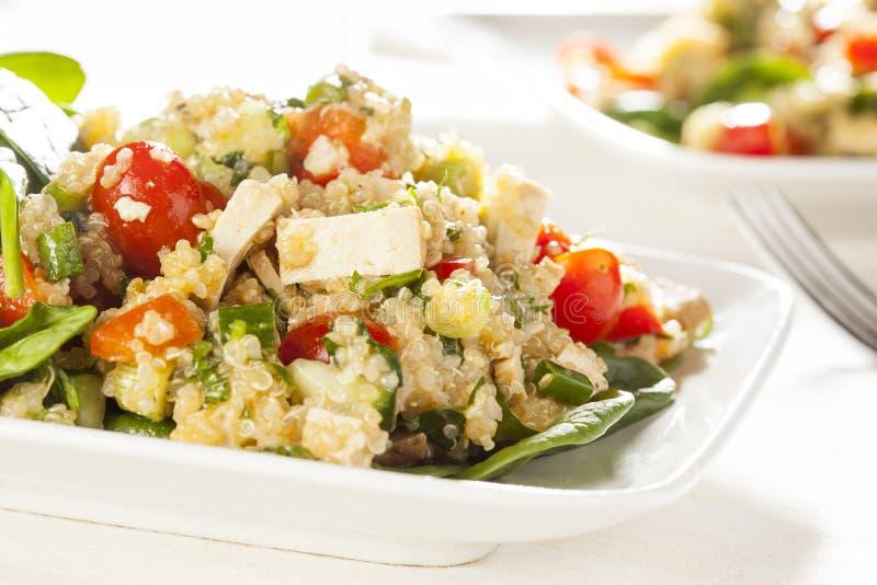 Organisk strikt vegetarianQuinoa med grönsaker royaltyfria foton