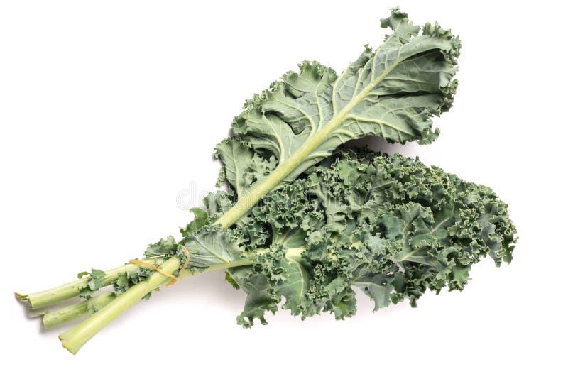 Organisk sund grön grönkål royaltyfria bilder