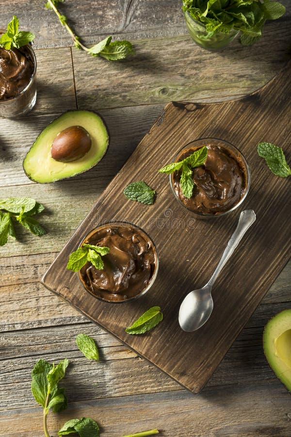 Organisk sund hemlagad avokadopudding royaltyfri bild