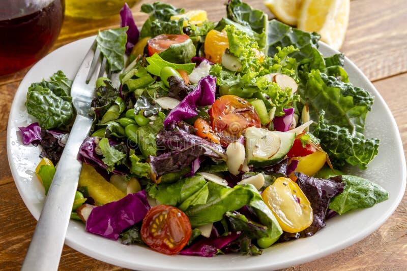 Organisk toppen matvegetariansallad fotografering för bildbyråer