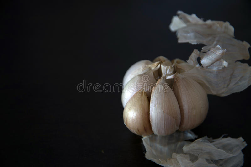 organisk vitlök royaltyfri bild