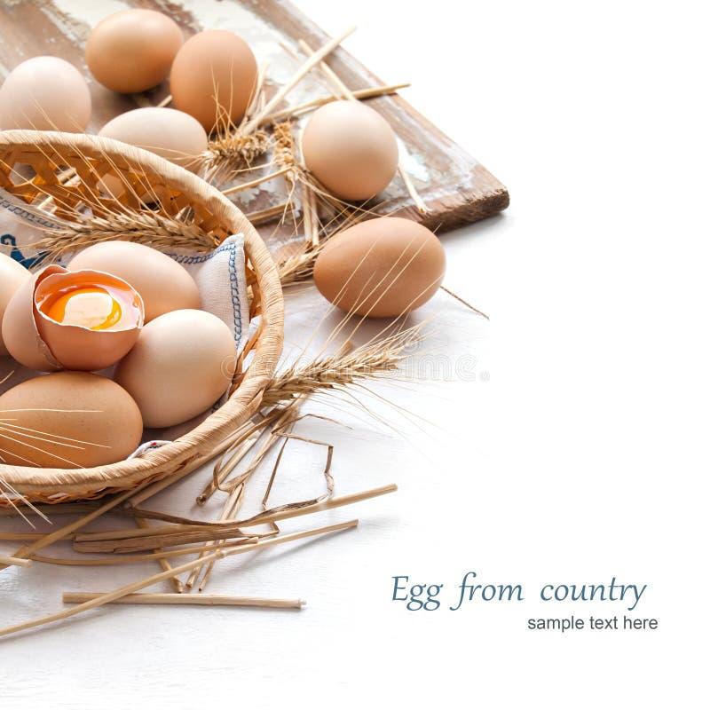 Organiska ägg för påsk royaltyfri bild