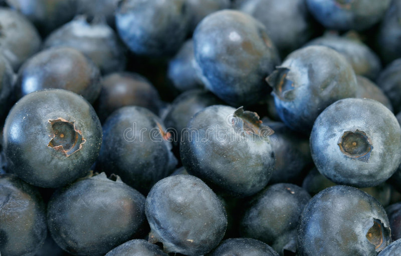 organiska blåbär royaltyfria foton
