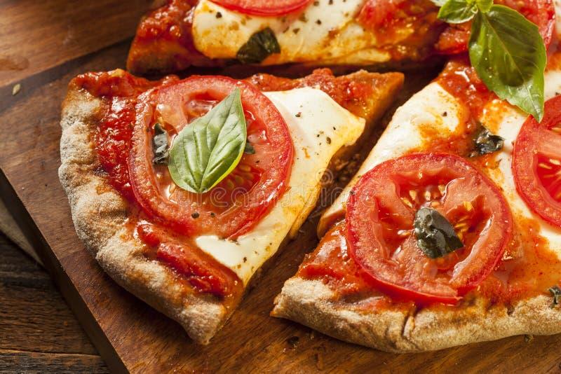 Organiska hemlagade Margarita Pizza royaltyfri foto