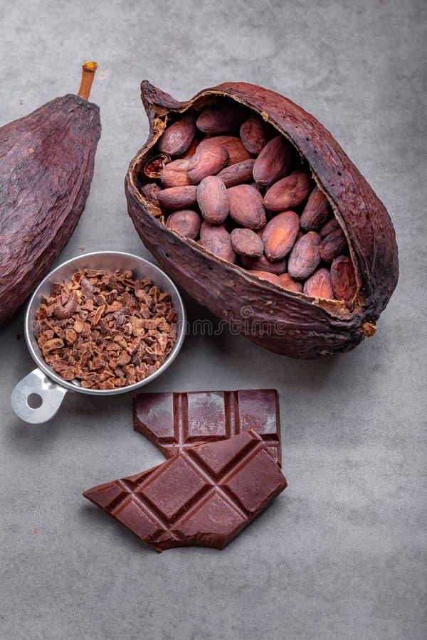 Organiska kakaob?nor Ingrediens f?r f?rberedelsechoklad fotografering för bildbyråer