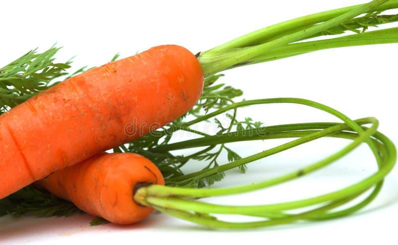 organiska morötter royaltyfria foton