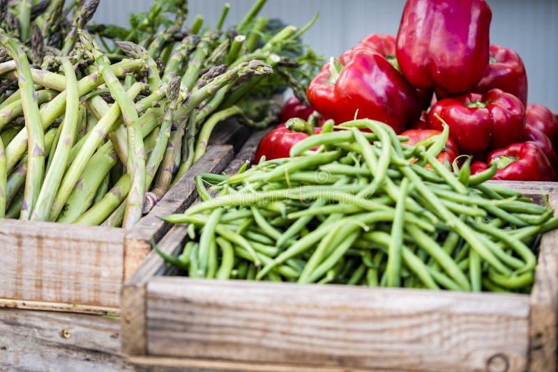 Organiska nya grönsaker i träaskar som visas på marknaden, closeup arkivbild