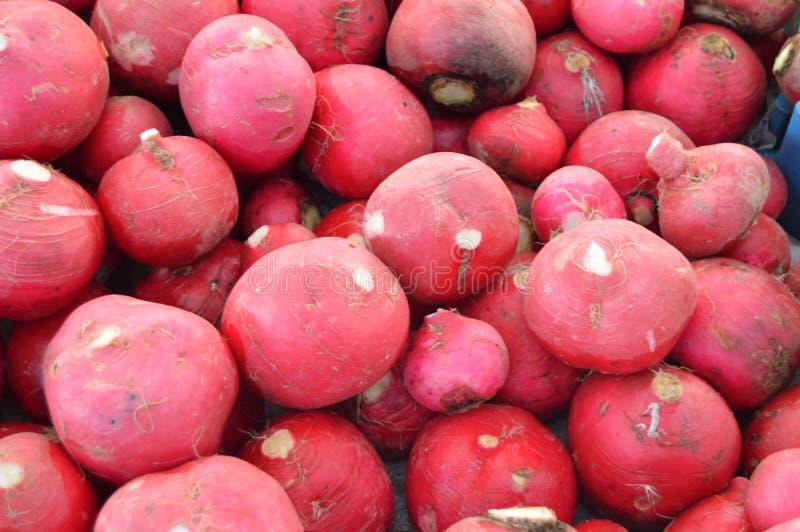 Organiska och sunda rädisa- och rovabilder på greengrocery arkivbilder