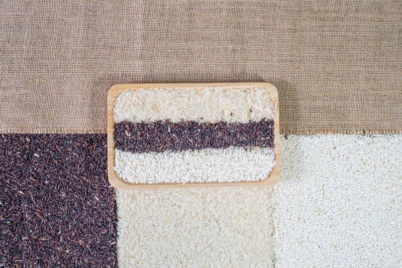 Organiska ris, blandade ris, vita ris för jasmin, risbär, limaktigt ris i träbunke på säckbakgrunden arkivbilder