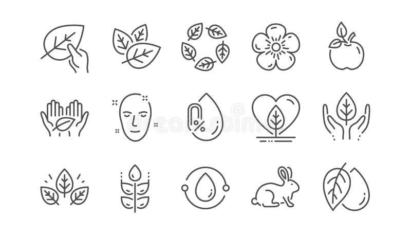 Organiska sk?nhetsmedel fodrar symboler Ingen alkohol, syntetisk doft, ganska handel Linj?r upps?ttning vektor stock illustrationer