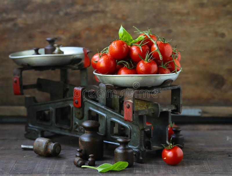 organiska tomater f?r Cherry royaltyfri fotografi