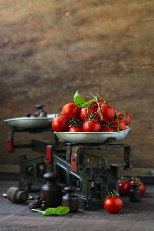 organiska tomater f?r Cherry fotografering för bildbyråer