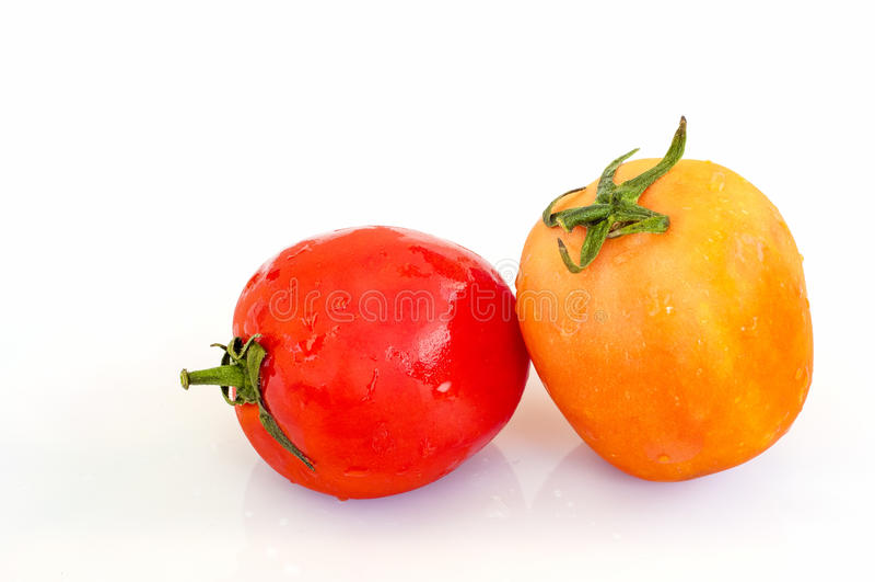 Organiska tomater på en vit bakgrund royaltyfri bild