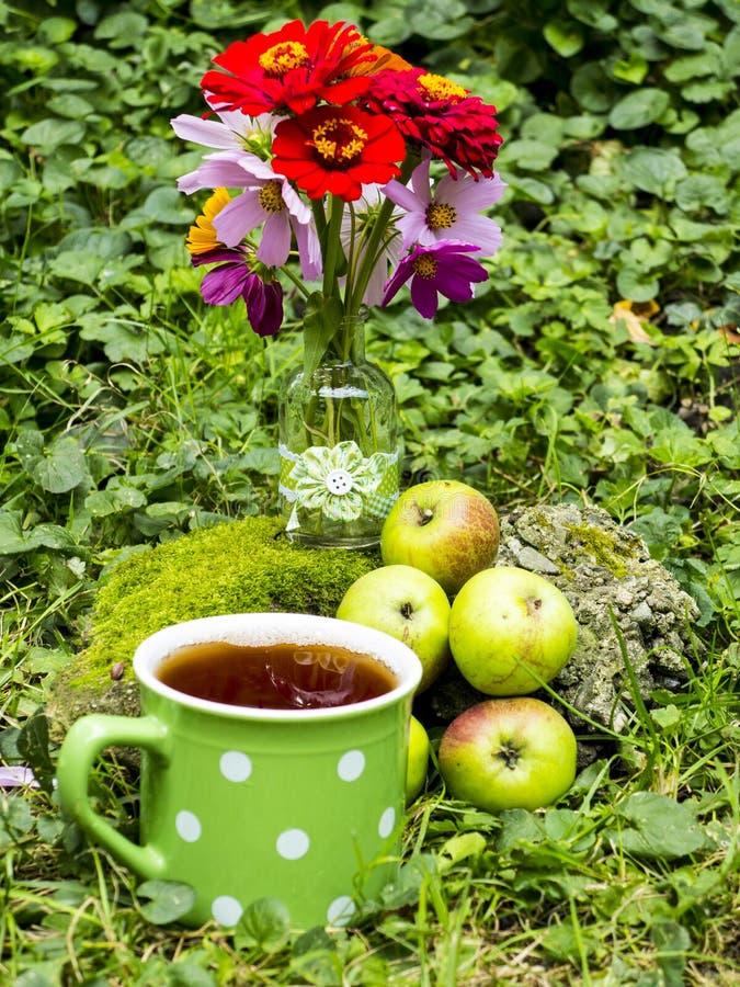 Organiskt äpplen och te royaltyfria foton
