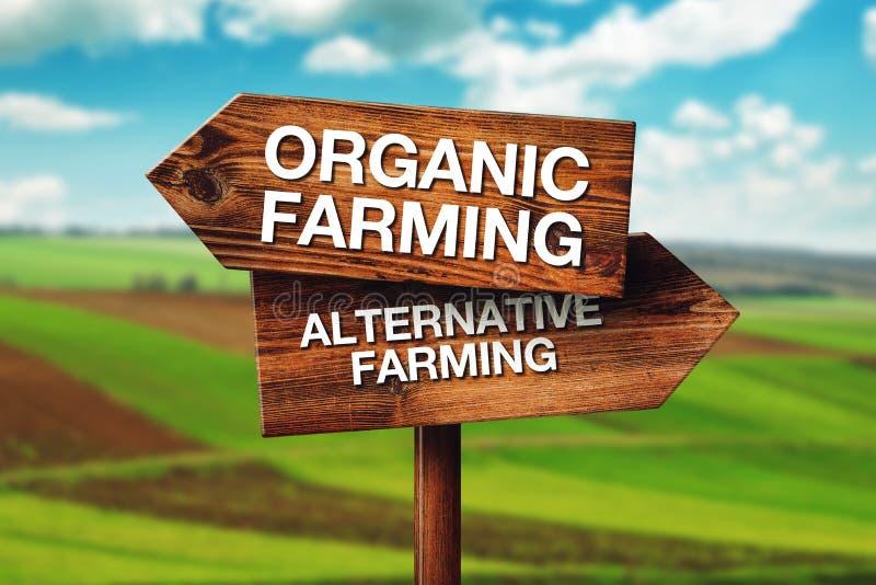 Organiskt eller alternativt lantbruk royaltyfria bilder