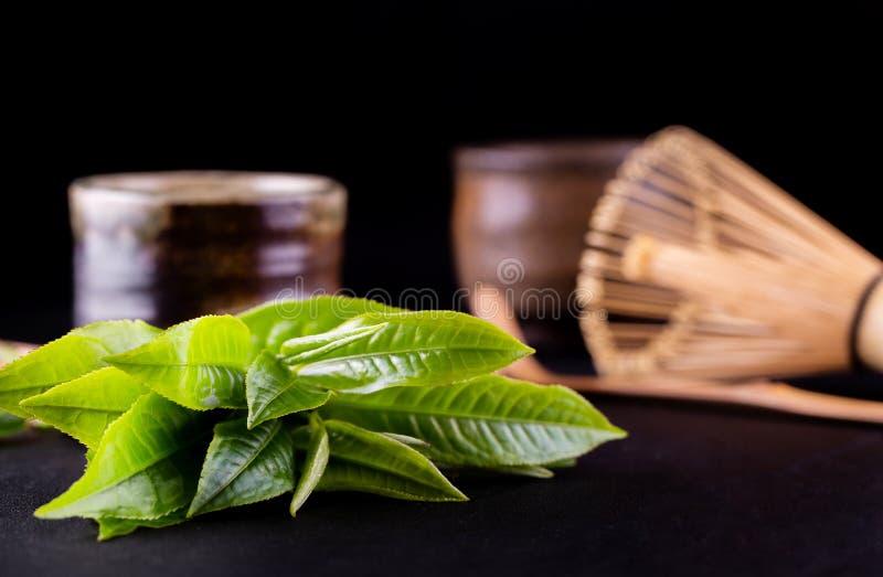 Organiskt gr?nt Matcha te i en bunke royaltyfri bild