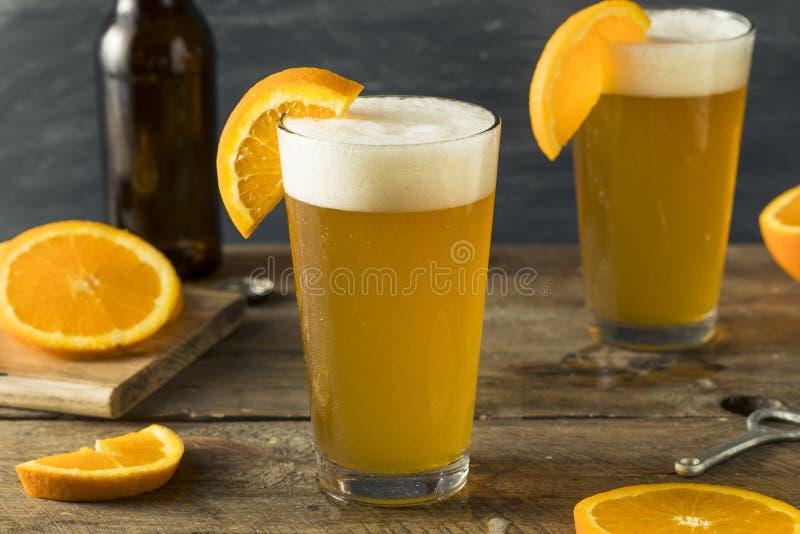 Organiskt orange citrust hantverköl royaltyfria foton