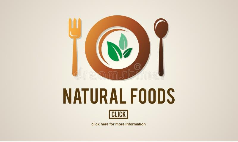 Organiskt sunt vård- begrepp för naturlig mat vektor illustrationer
