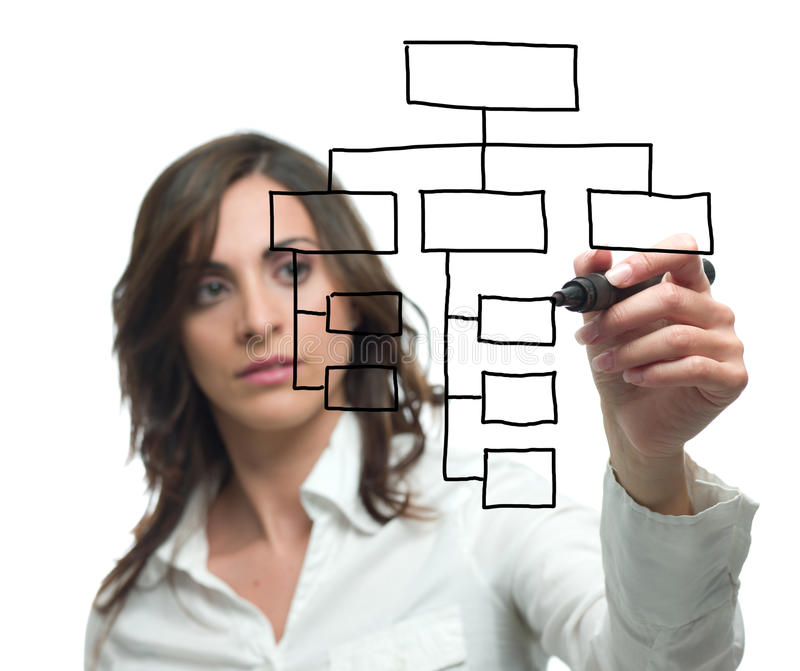 Organitation chart. Businesswoman draw blank boxes of organization chart stock photo