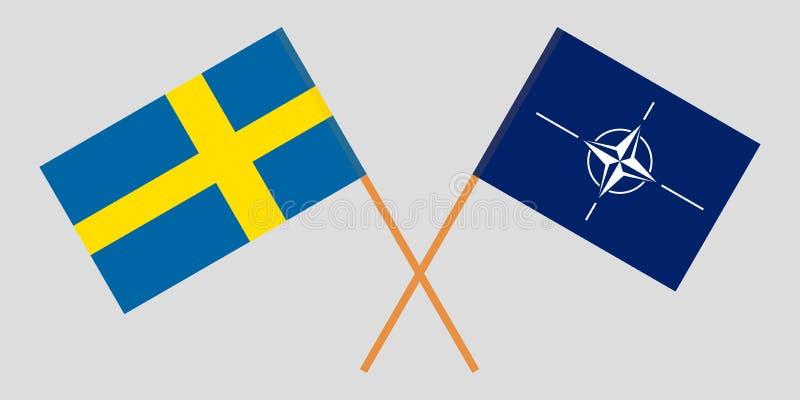 Organización del Tratado del Atlántico Norte y Suecia La OTAN y las banderas suecas Colores oficiales Proporci?n correcta Vector stock de ilustración