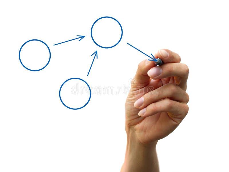 Organization chart. A human hand drawing a process diagram royalty free stock image