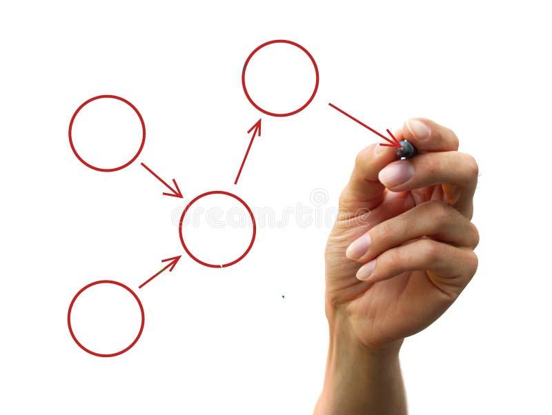 Organization chart. A human hand drawing a process diagram royalty free stock images