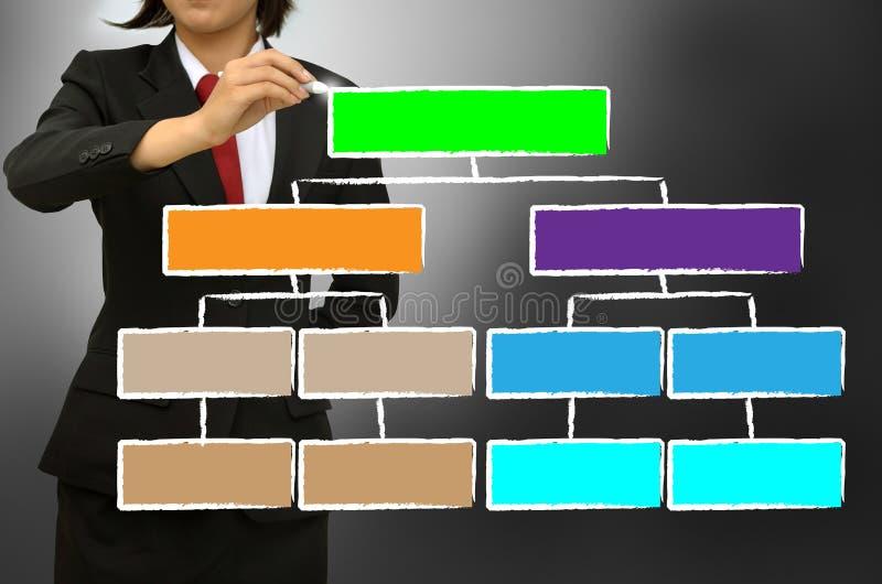 Organization chart. Business woman writing organization chart stock photos