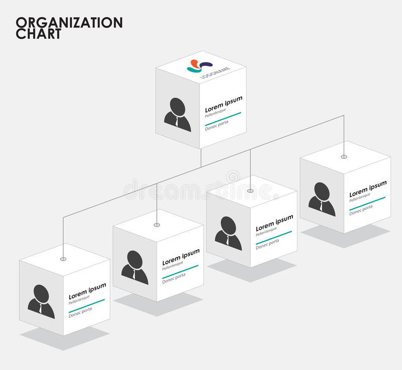 Organization chart infographics with tree, Box organization. Organization chart infographics with tree. vector illustration vector illustration