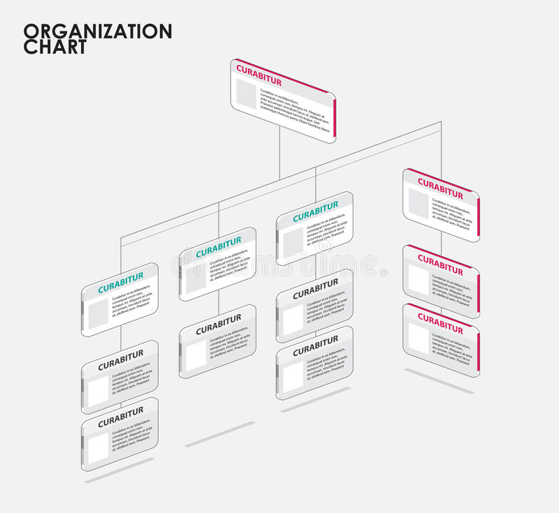 organization chart infographics with tree  diagram flow