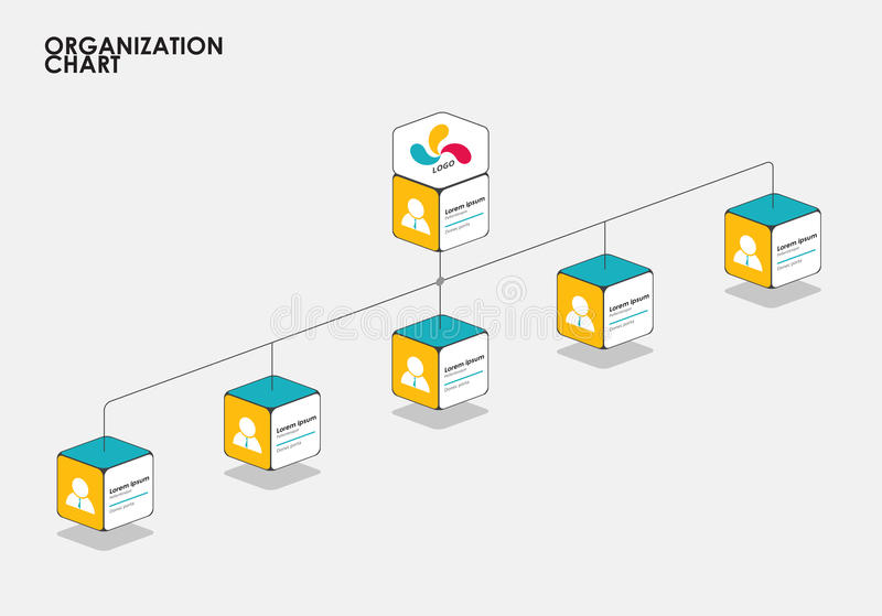 Organization chart infographics with tree, Diagram flow. vector. Illustration royalty free illustration